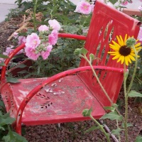 .A chair in my sister's little garden in Arizona. Small and cozy her garden is a beauty.